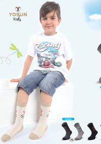 Носки для мальчика, (арт. 3898)