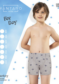 Боксеры для мальчика, (арт. 7005)