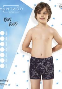 Боксеры для мальчика, (арт. 7003)