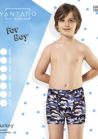 Боксеры для мальчика, (арт. 7004)