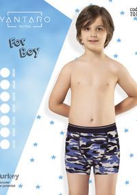 Боксеры для мальчика, (арт. 7011)
