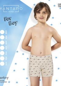 Боксеры для мальчика, (арт. 7006)