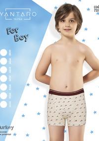 Боксеры для мальчика, (арт. 7013)