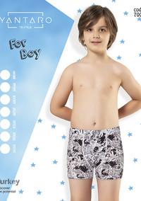 Боксеры для мальчика, (арт. 7001)