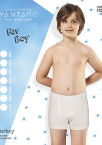 Боксеры для мальчика, (арт. 7000)