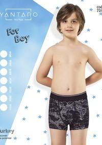 Боксеры для мальчика, (арт. 7010)