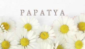 Новинка - бренд Papatya!